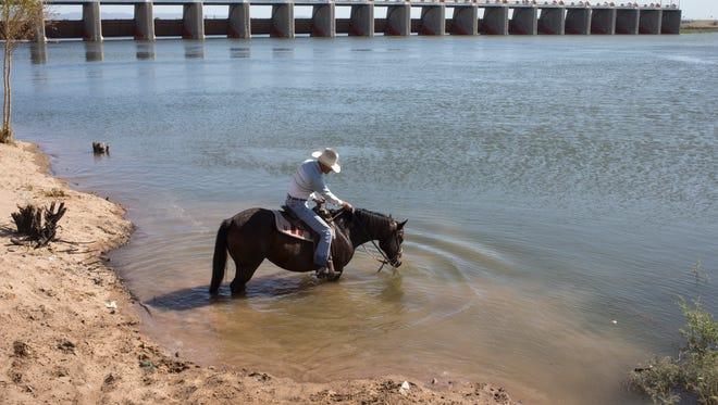 Francisco Arvizu give his horse, Luna, a drink in the Colorado River below Morelos Dam on Thursday, March 27, 2014, Los Algodones, Baja California, Mexico.