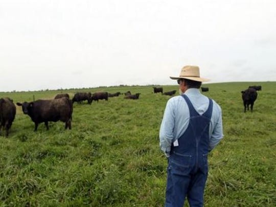 Beginning Jan. 24, all Farm Service Agency (FSA) offices will open to provide more services to farmers.