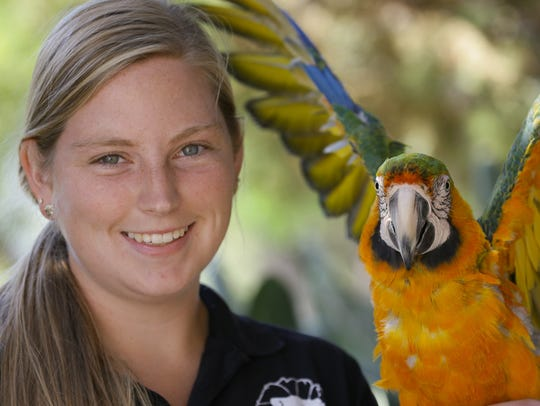 Salsa, a Catalina macaw shown here with trainer Lydia Hall, will be one of the performers featured in holiday-themed shows during the Arctic Lights event Dec. 16 and 17 at America's Teaching Zoo at Moorpark College.