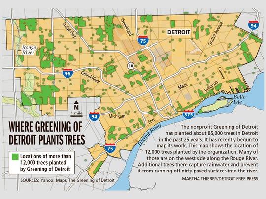Where Greening of Detroit plants trees