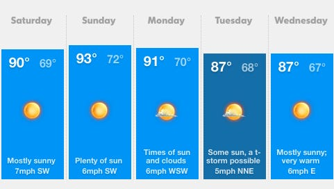 Weather forecast for Binghamton, NY for June 28 through July 5.