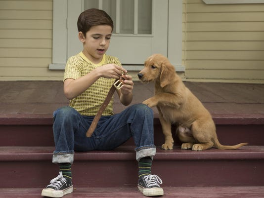 Film Review A Dog's Purpose