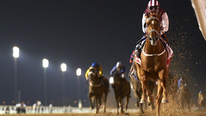 Special Fighter rolled to a win in Saturday's Al Maktoum Challenge Round 3.