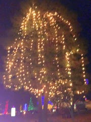 An estimated 85,000 Chrstmas tree lights were used to decorate the village parks.