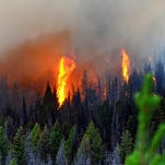 Trees burn in the Sucker Creek fire in the Helena-Lewis and Clark National Forest in August. The 2015 fire season in the Northern Rockies was above average. A normal season is predicted for 2016.