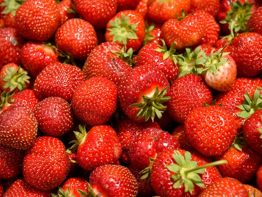 Fresh strawberries are shown Thursday, June 21, at Grayson's Berryland in Clear Lake.