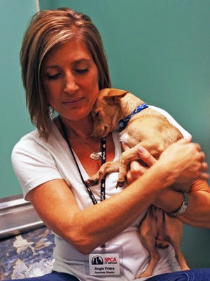 Angie Friers is associate director of the Brevard SPCA.
