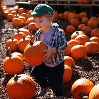 Harvest Fair at State Fair Park is one of the fun fall festivities going on around town!