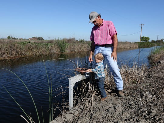 In this file photo, farmer Rudy Mussi watches as his grandson Lorenzo tries to turn a water valve on his almond orchard in the Sacramento-San Joaquin Delta near Stockton.