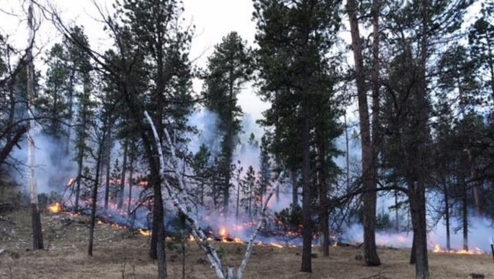 The Legion Lake Fire in Custer State Park has burned