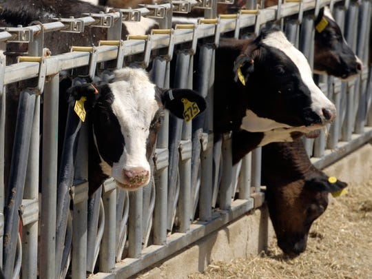 Tulare County is the number one milk producing county. With a dense clustering of cows in parts of the county, It's good for larger scale biogas collection technologies.