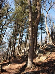 The Ice Age Trail climbs to the top of Gibraltar Rock