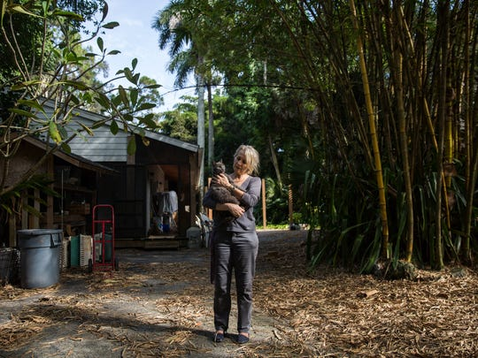 Heather Burch owns and operates Brigid's Crossing Foundation, a cat sanctuary in Naples, Fla., that is making preparations for the arrival of Hurricane Irma. With anywhere between 100 and 250 cats in her care, Burch is seeking monetary donations as well water, cat food and power generators.