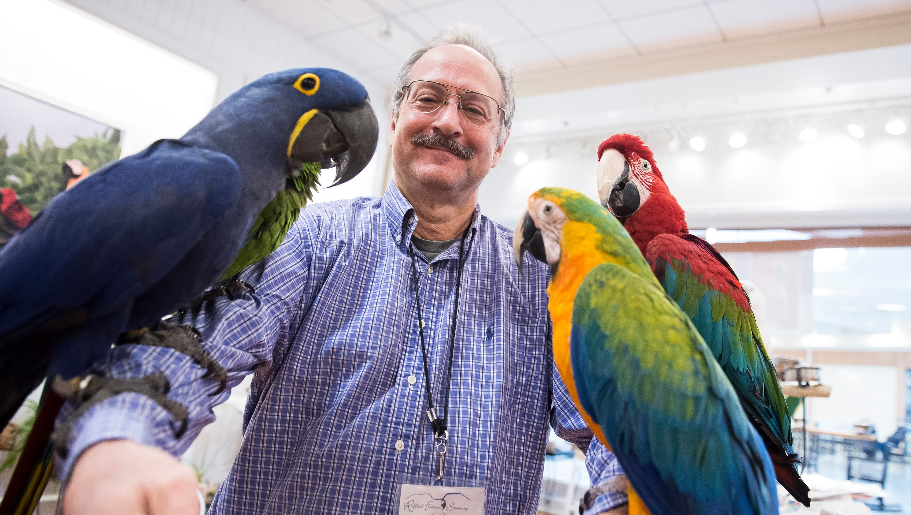 Ruffled Feathers bird sanctuary spreads its wings in Hanover Ruffled Feathers Sanctuary