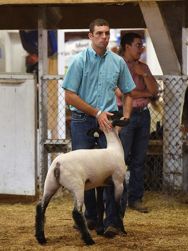 Bryce Vernon shows a lamb during the Showman of Showmen