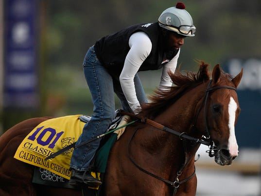 USP HORSE RACING: 33RD BREEDERS CUP-WORKOUTS S RAC USA CA