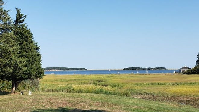 Rachia Heyelman has made it possible for this Pleasant Bay waterfront parcel to remain undeveloped by transfering ownership to the Orleans Conservation Trust.