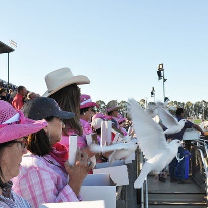 Rodeo reins in support for nonprofits