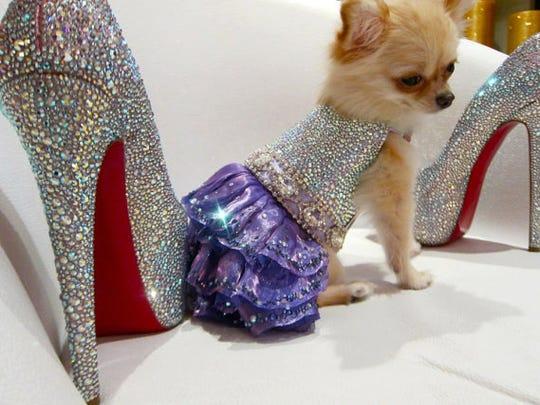 Sparkling Mystic Swarovski Crystal Couture Dog Dress