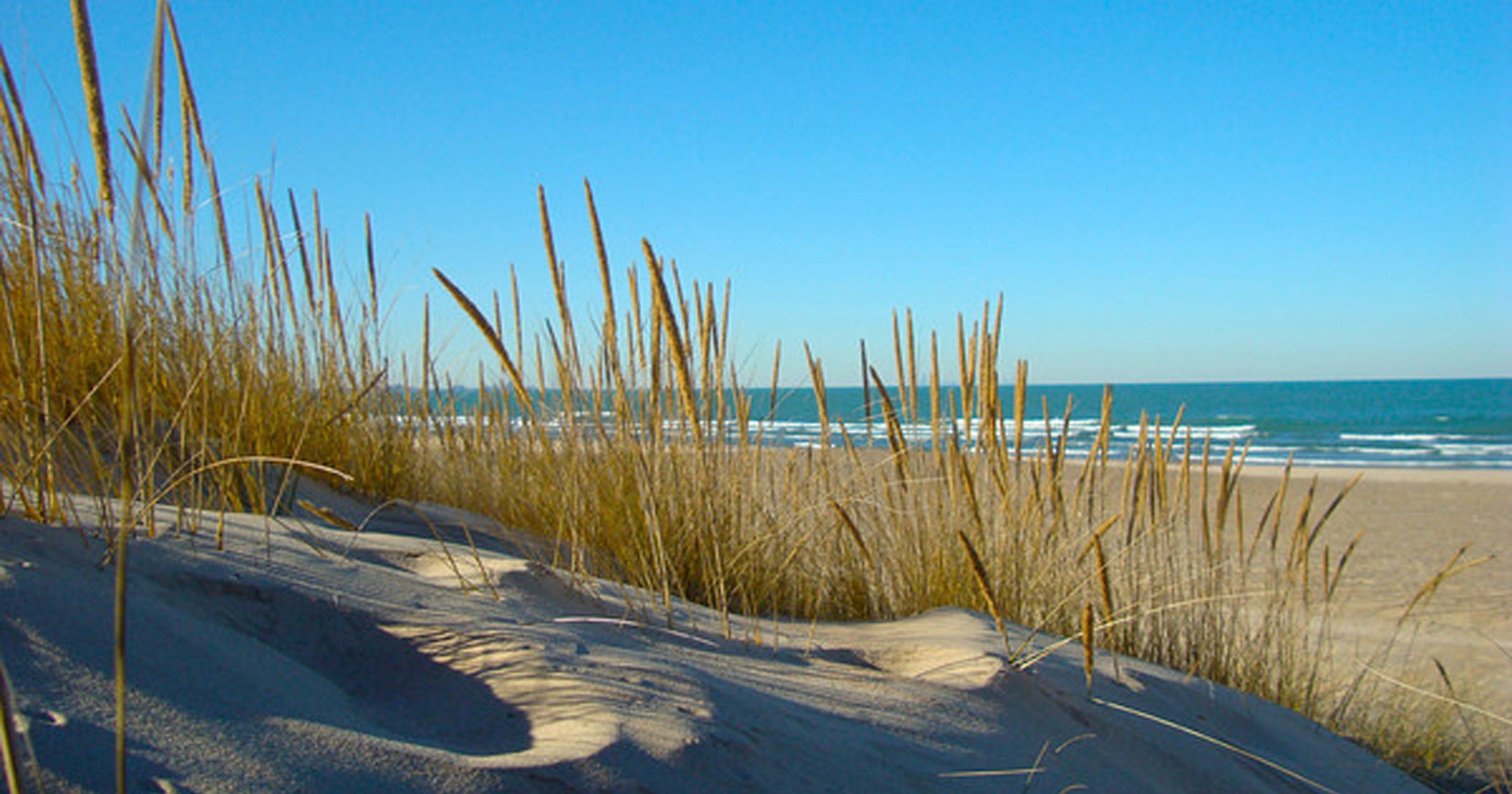 8 Indiana beaches where you can dig toes into the sand