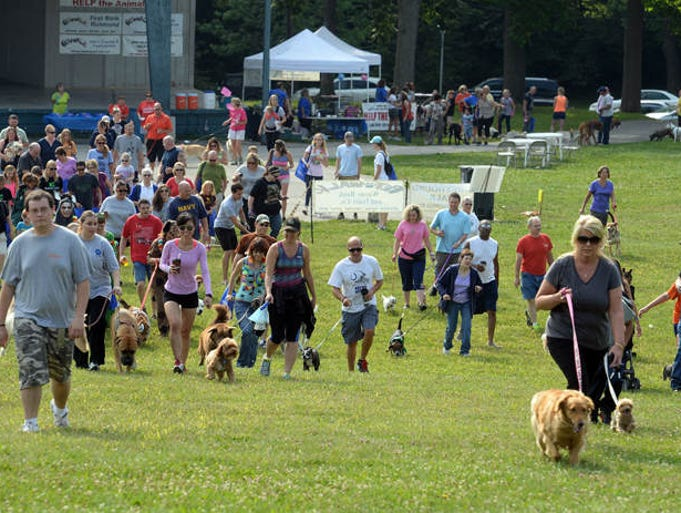 Owners begin to walk with their dogs during the Bark in the Park: 23rd annual Pet Walk Saturday, July 26, 2014 at Glen Miller Park.