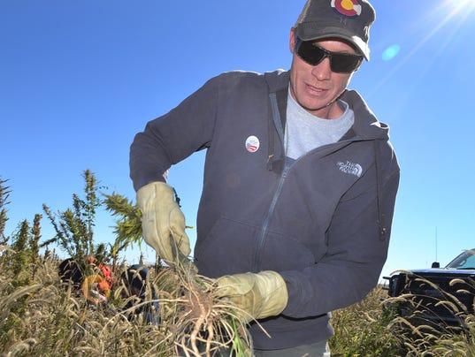 AP Farm Bill Hemp