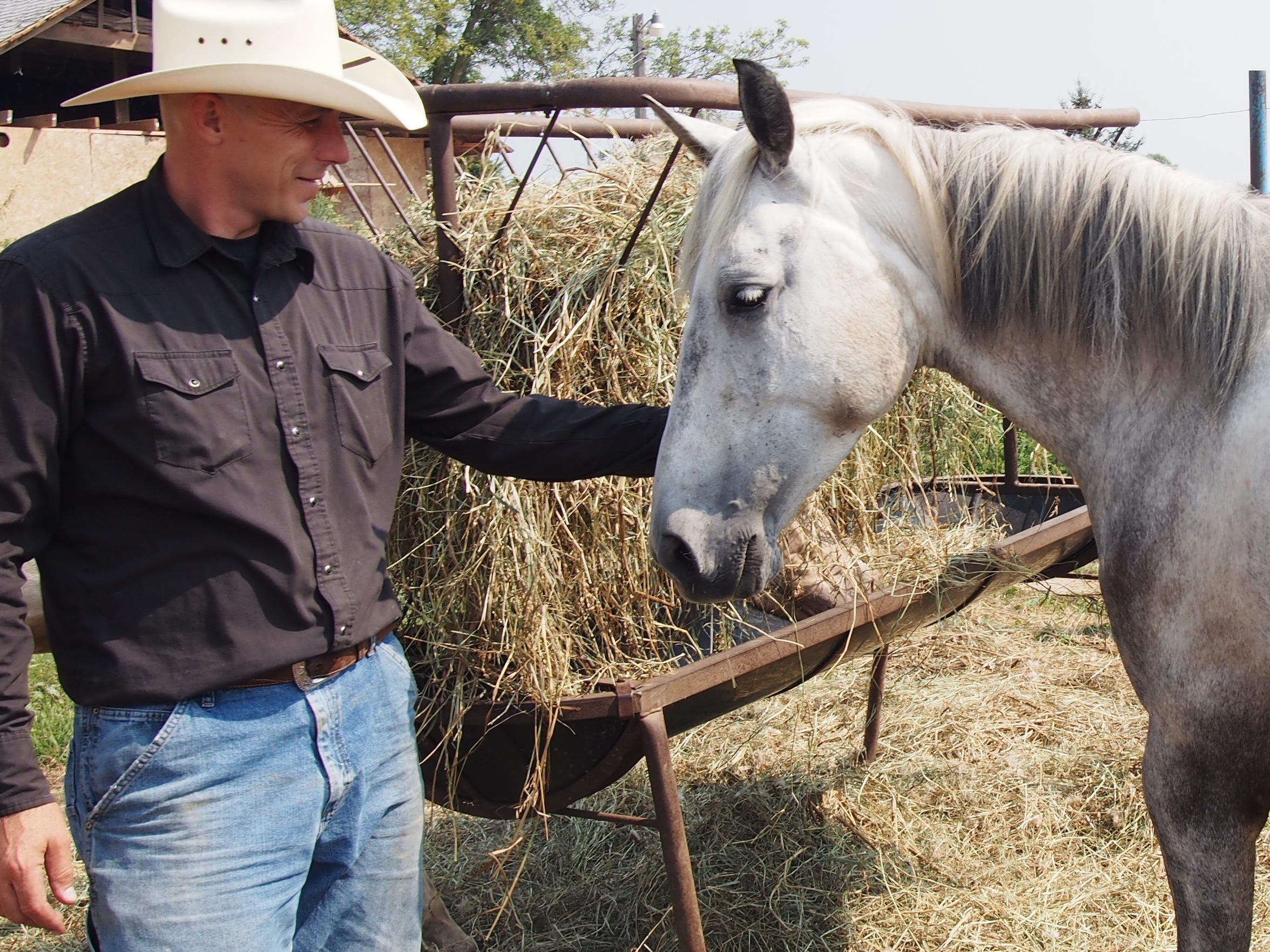 Pastor David Ward, owner of Sweet Haven Ranch, reaches out for Whisper, a roan Tennessee walking horse.
