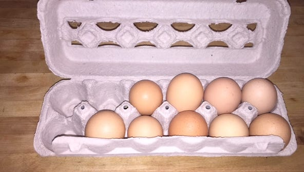 Fresh eggs, with a few already used, from Lombardo