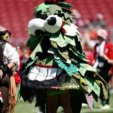 Aug 30, 2014; Stanford, CA, USA; Stanford Cardinal mascot the Tree performs before the game against the UC Davis Aggies at Stanford Stadium.
