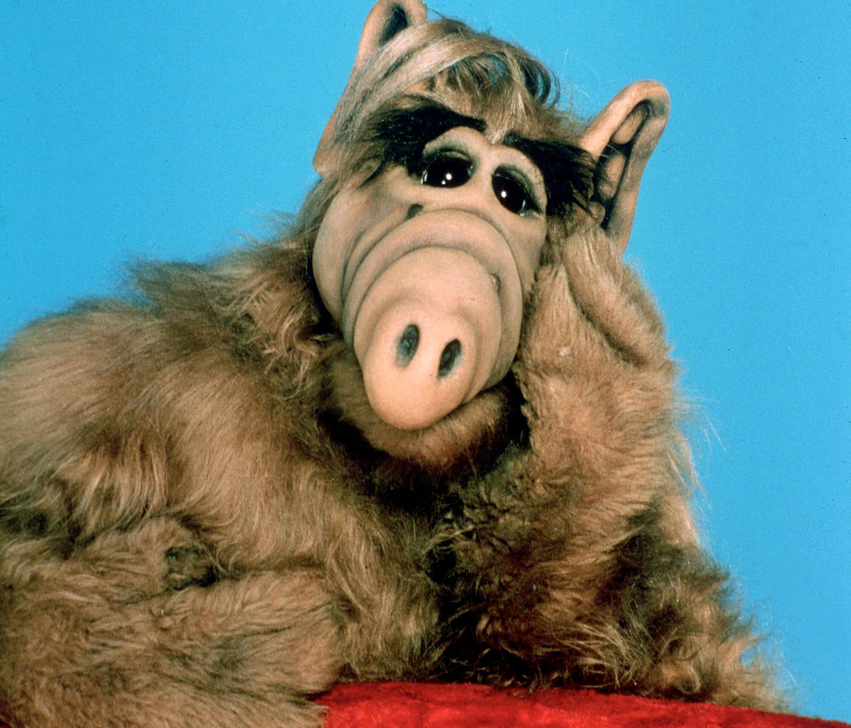 Alf Quotes Ktvb  Michu Meszaros Actor Who Played 'alf' Dies