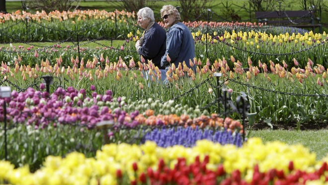 Washington Park in Albany celebrates the city's Dutch heritage with a tulip festival May 7 and 8.