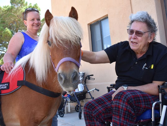 Horse Therapy 1
