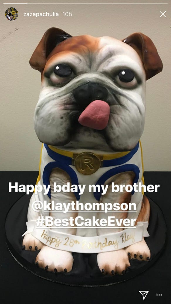 Klay Thompson got a fantastic dog birthday cake that he hoped to show his real dog