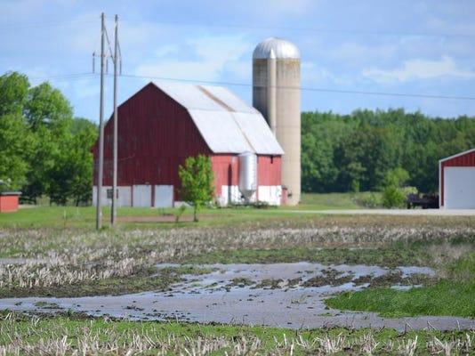 Wet field 2.jpg