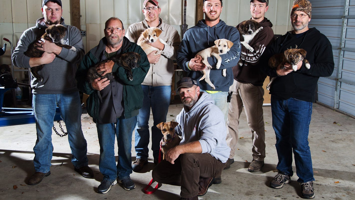 What Happens When Puppies Crash A Bachelor Party?