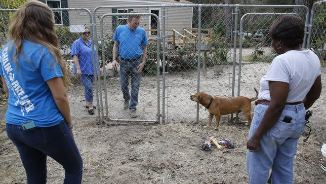 From left, VOCAL Program Coordinator Crystal Crowell, organization founders Angie and Rob Wyche and Maple Hamilton look at Hamilton's dog Truball Saturday. Before VOCAL built a fenced-in area for Truball, Hamilton had to keep him on a chain because she couldn't afford to build one herself.