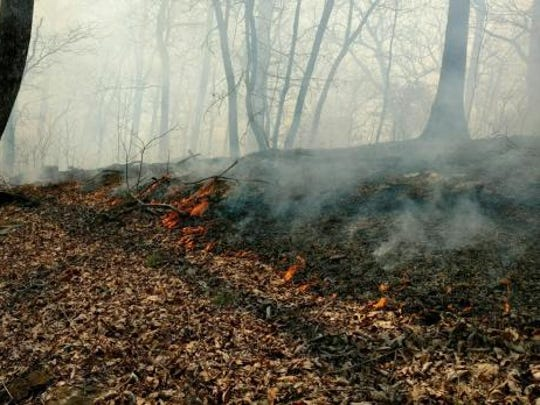 Firefighters conducted back burns on the Dobson Knob Fire before they used a helicopter to drop water on the flames Tuesday April 11, 2017.
