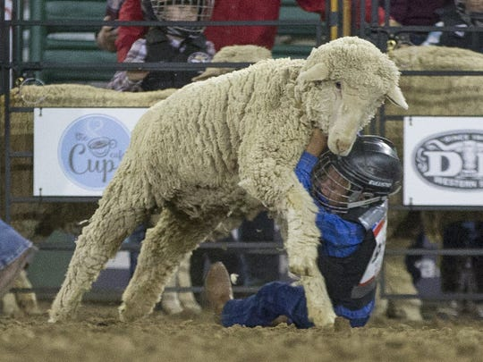 Mutton Bustin during the Reno Rodeo in Reno, Nevada on  June 16.