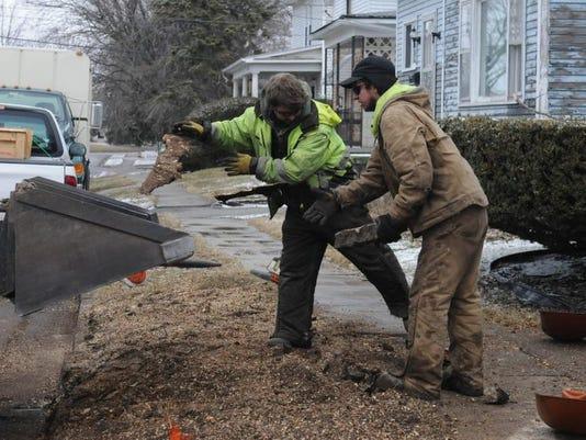 stump removal 1.JPG