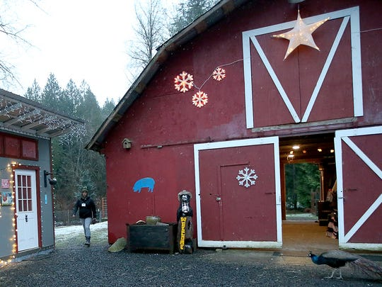Randee Morrow walks past the barn as she gets ready for the start of a Winter Farm Night at The Animal Experience in Port Orchard.