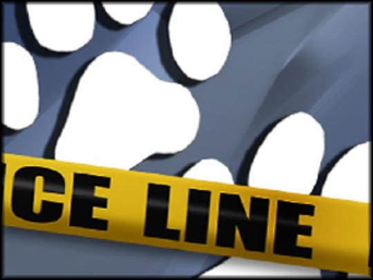 The city is investigating a Christmas Eve dog attack in Wichita Falls.