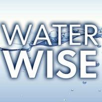 Visalia, Tulare have same state-approved water saving target