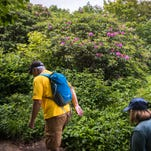 Hikers in the Parkway's Great Craggy Mountains