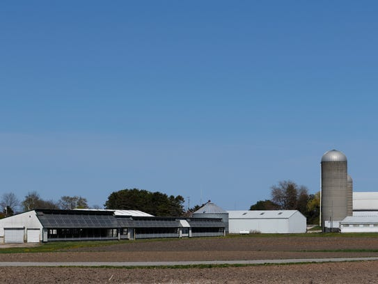 Strutz Farms Inc. north of Two Rivers has a calf barn