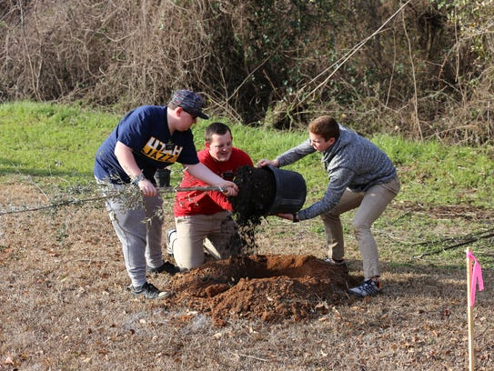 Volunteers helped plant more than 165 trees in the