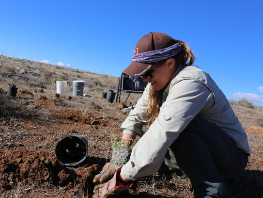 Megan Linke, a technician with the Utah Division of