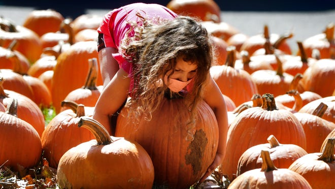 Violet Schusterbauer, of Barrington, wraps her arms around an oversized choice while with her family shopping for pumpkins at the St. John's Episcopal Church pumpkin sale on Sunday afternoon.
