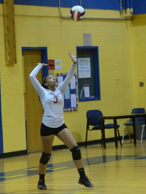 Senior Melissa Marte set the Bloomfield record for kills with 270 last year.