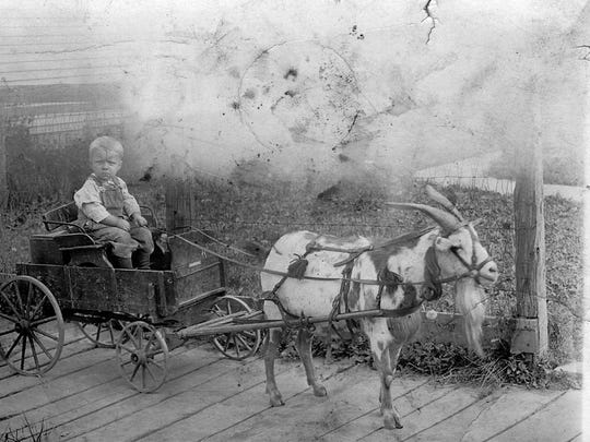 A picture postcard of a child and his goat-powered cart. Billy Carts date back to the late 19th century and were originally made to be pulled by a 'billy' goat. They were typically attached to a goat, like a sled is attached to a husky dog. Perhaps this was part of Grandma's brag book.