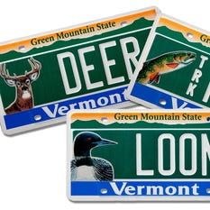 Burlington free press for Vt fish and game license
